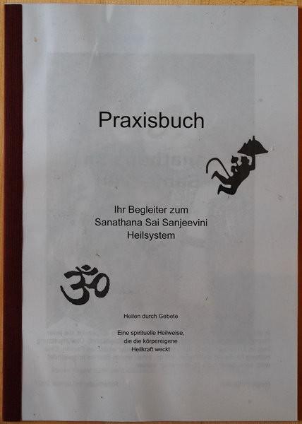 Sanjeevini Praxisbuch Auflage 2013